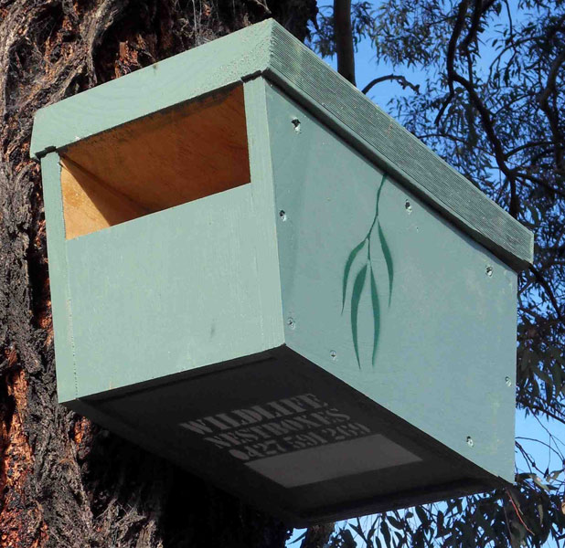 Wildlife Nestboxes Attract Hollow Dependent Wildlife To